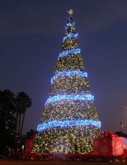 sea world christmas tree photo