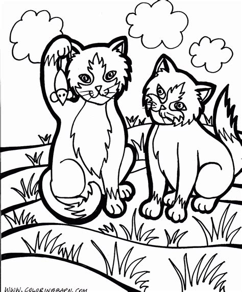 coloring pictures dogs cats cat color pages printable cat kitten printable coloring