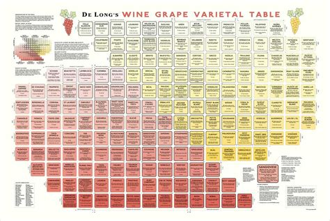 napa general store wine grape varietal table poster