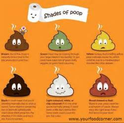 Shades of poop meanings you didn t know your food corner