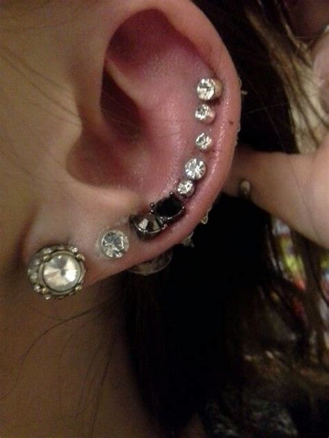 entire ear pierced needle junkie all studs inkjunkey