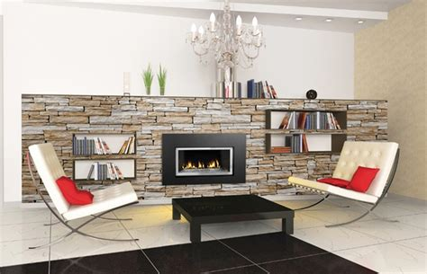 glass gas fireplace inserts napoleon gdi 30g direct vent gas fireplace insert with