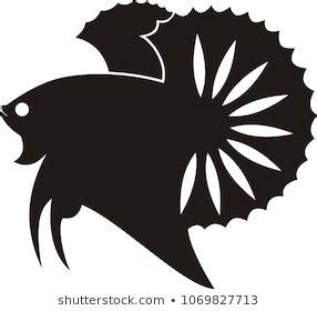 logo ikan cupang keren berbagi ilmu belajar bersama