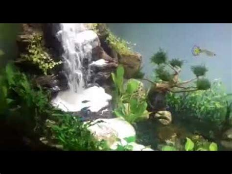membuat air terjun  aquascape youtube