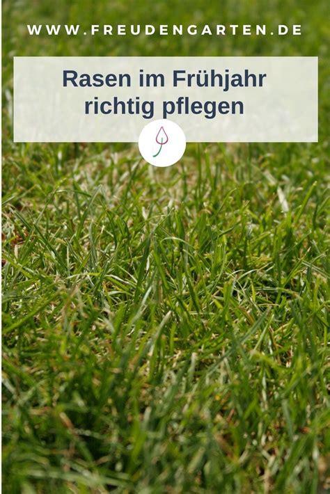 garten pflanzen reihenfolge den rasen im fr 252 hjahr richtig pflegen pflanzen