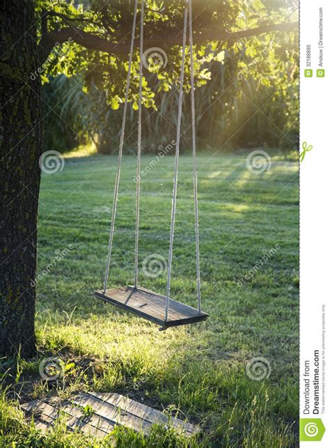 hang tree swing wooden vintage garden swing stock photo image 32188890
