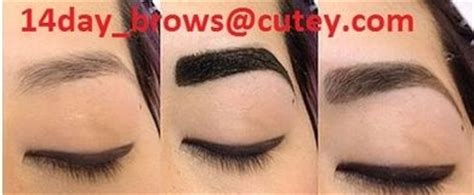 henna tattoo indianapolis 14 best images about eyebrow henna on brows