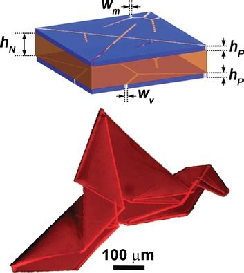 Self Folding Paper - new paper self folding origami materials geometry