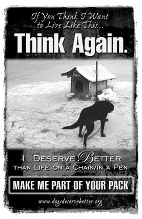 Dogs Deserve Better And So Do I Think by 319 Best Images About Stop Animal Abuse On