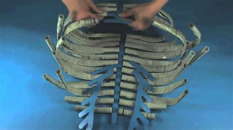 How To Make A Paper Bone - roylco r60558 newspaper skeleton