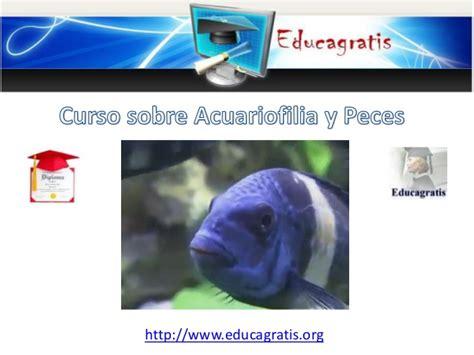 curso devoluciones y compensaciones 2016 curso de acuariofilia y peces 2016