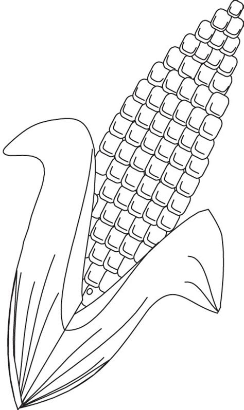 corn coloring page download free corn coloring page for