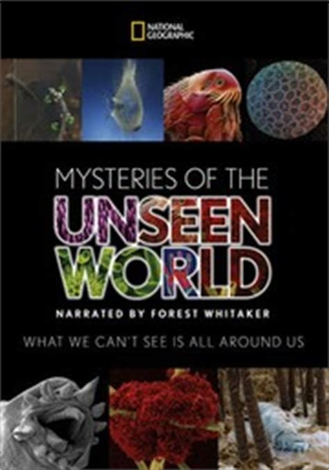 of the unseen world the mystery of meera books mysteries of the unseen world 2013 rotten tomatoes