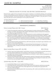 resume summary statement sles exles of resume summary statements best resume exle