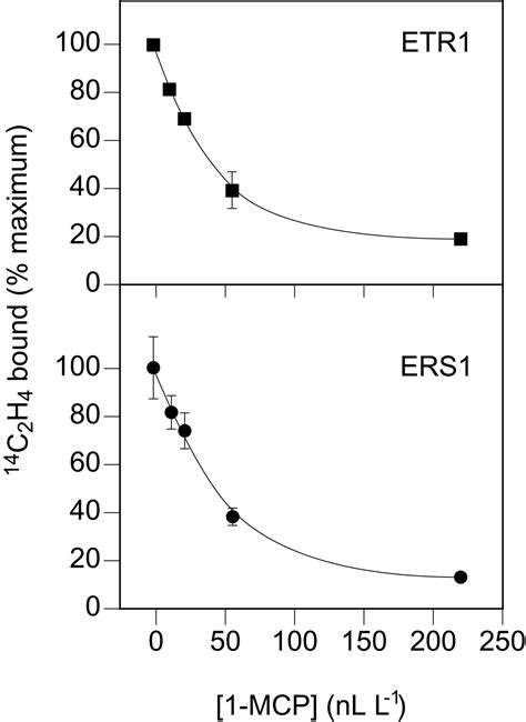 Ethylene Perception by the ERS1 Protein in Arabidopsis