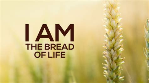 Sermon Outline Bread Of by I Am The Bread Of Sermon Notes
