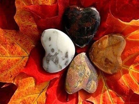 leaf  stone pictures   images  facebook tumblr pinterest  twitter