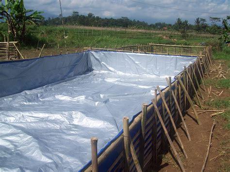 Terpal Plastik A2 2 X 3 pertenakan lele sangkuriang membuat kolam terpal