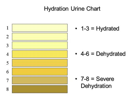 hydration urine chart hydrating for performance and health athletico