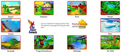 Forest House Rain Forest Clipart Clip Art Library