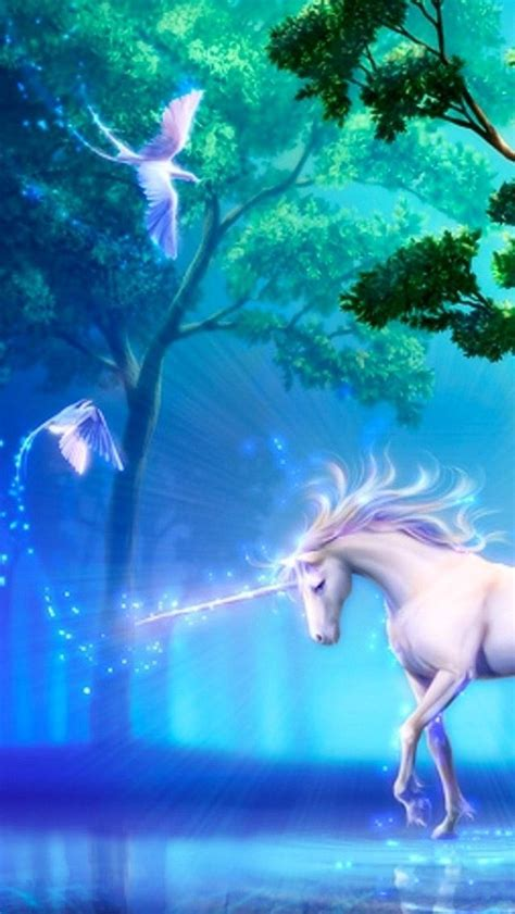 girly horse wallpaper 183 best images about feeling girly on pinterest