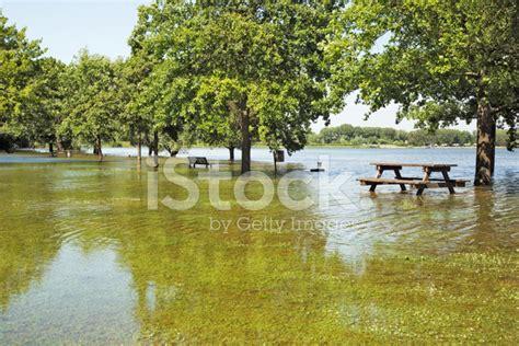 Italian Garden Mantua by Flood In Mantua Gardens Italy Stock Photos Freeimages