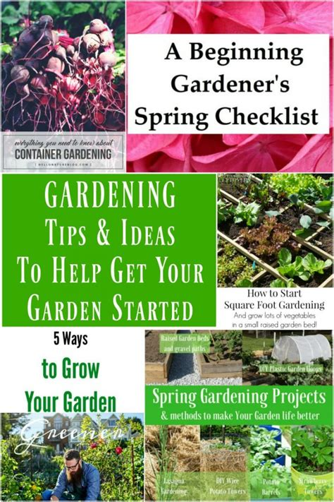 gardening tips and ideas gardening tips and ideas to help get your garden started