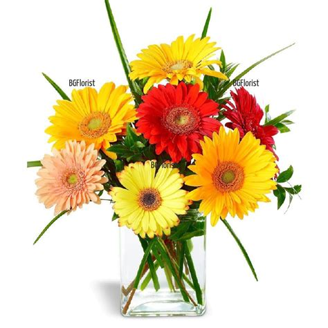send flowers to bulgaria with bgflorist send bouquet of