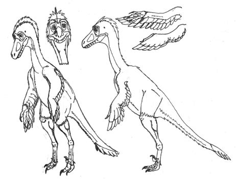 Troodon Coloring Page how to draw troodon