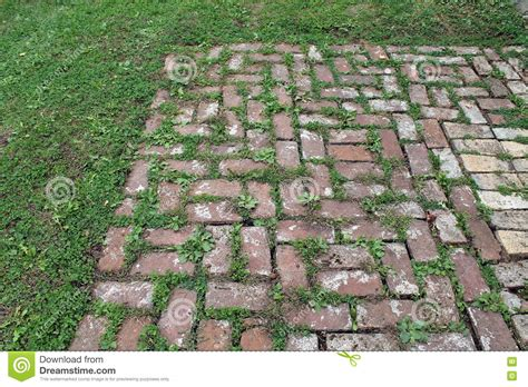 Patio Pavers With Grass Inbetween Brick Patio With Grass Growing Between The Pavers