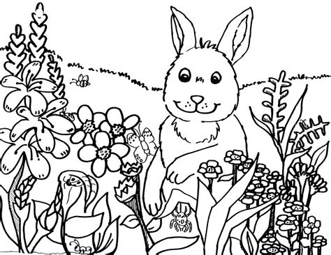 coloring pages spring janice s daycare seasons spring