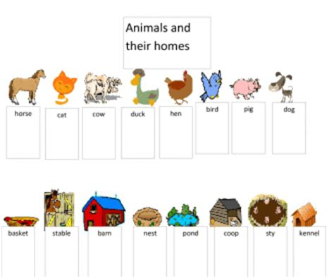 their home animals busyteacher free printable worksheets for busy