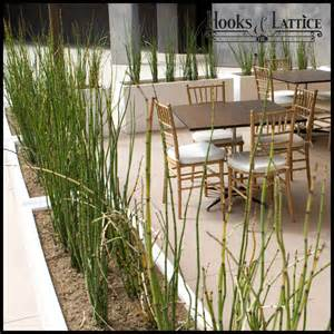 restaurant planters commercial outdoor planters unlimited