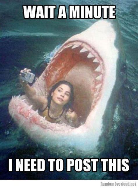funnymemesaboutgirls girl meme facebook selfie fail