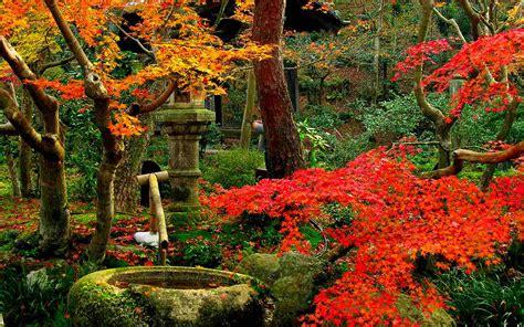 imagenes de jardines orientales naturaleza paisajes evocadores jardines japoneses
