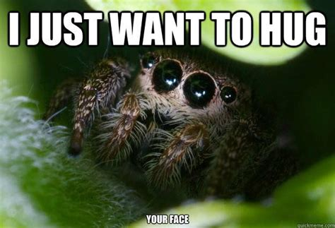 Spider Meme Pictures To Pin - spider meme cute spider meme adorable spiders meme