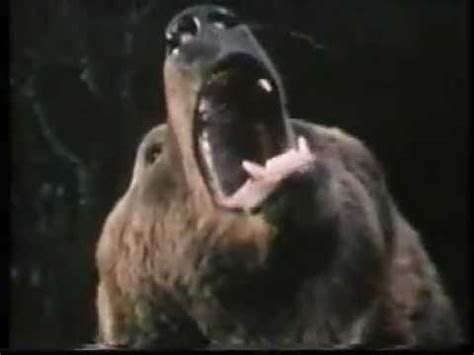 watch grizzly 1976 movie grizzly l orso che uccide 1976 l orso attacca il
