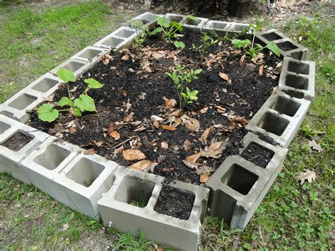 bed blocks ugly but free a raised bed garden made of cinder concrete blocks hydrangeas blue