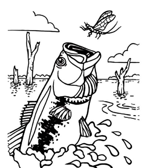 bass fish coloring pages free free reels coloring pages