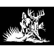 Whitetail Deer Decal Buck Car Truck Window Vinyl Hunting Sticker