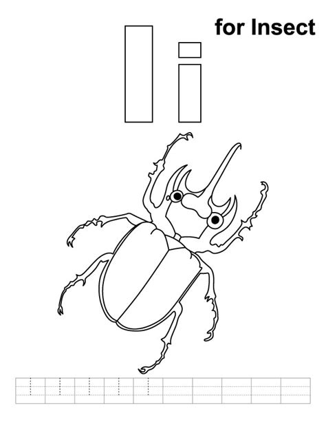 preschool grasshopper coloring pages insect coloring pages for kindergarten insect best free