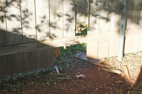 how to secure your backyard 5 tips to secure your backyard in minutes cammy