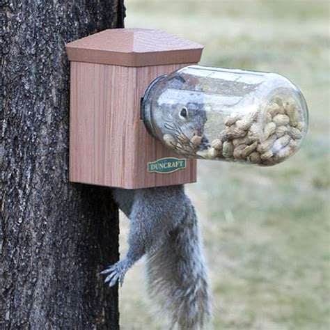 duncraft com duncraft bottoms up squirrel jar feeder