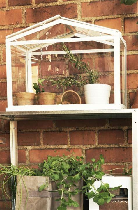 socker greenhouse ikea socker のおすすめ画像 102 件 pinterest 温室 イケア 植物