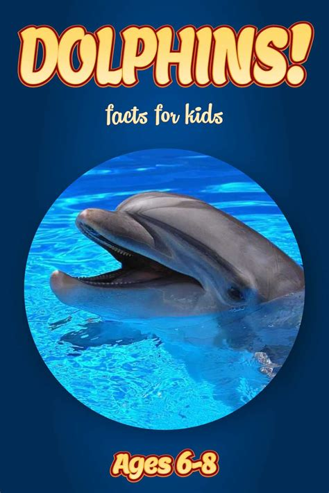 Zaira And The Dolphins Ebooke Book home non fiction books for ebooks for