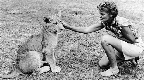 film elsa the lioness bbc four elsa the lioness
