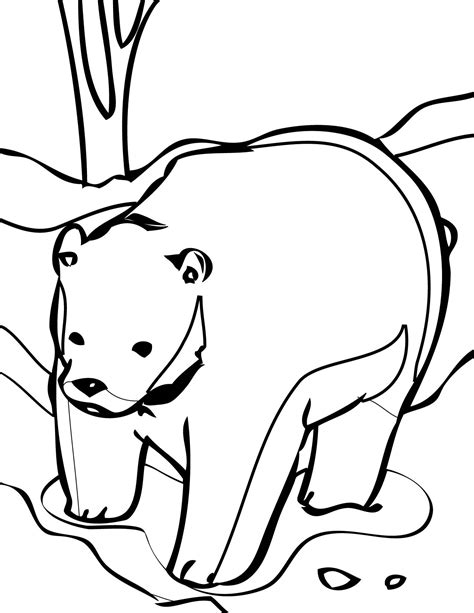 cute bear coloring page free printable bear coloring pages for kids
