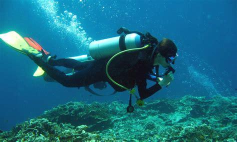 dive in scuba diving in moalboal cebu planet adventure