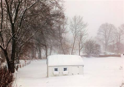 backyard blizzard winter my wall