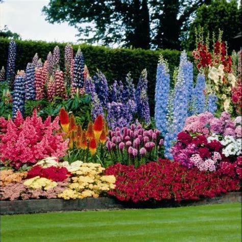 perennial flower garden ideas the beautiful